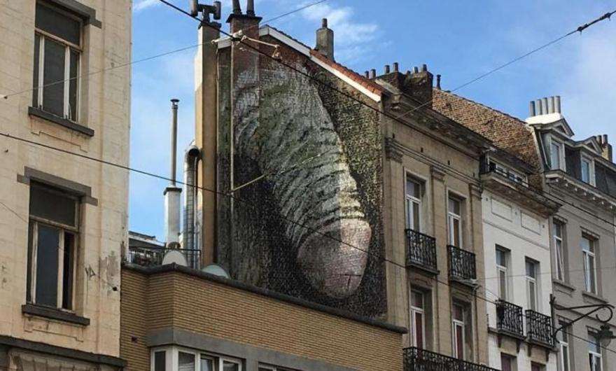 Provocan reacciones murales anónimos en Bruselas
