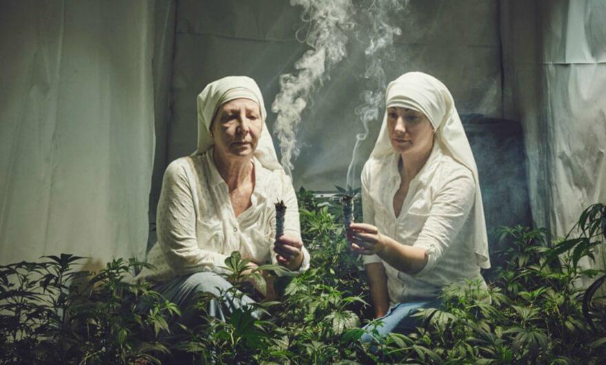 Legalizan el uso recreativo de la mariguana en California