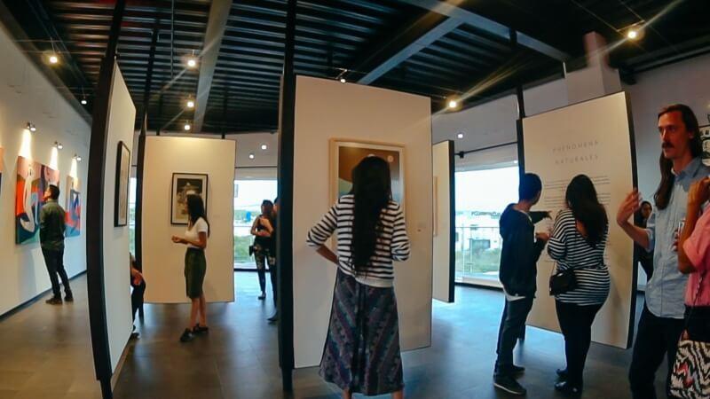 Exhibición Hilda Palafox