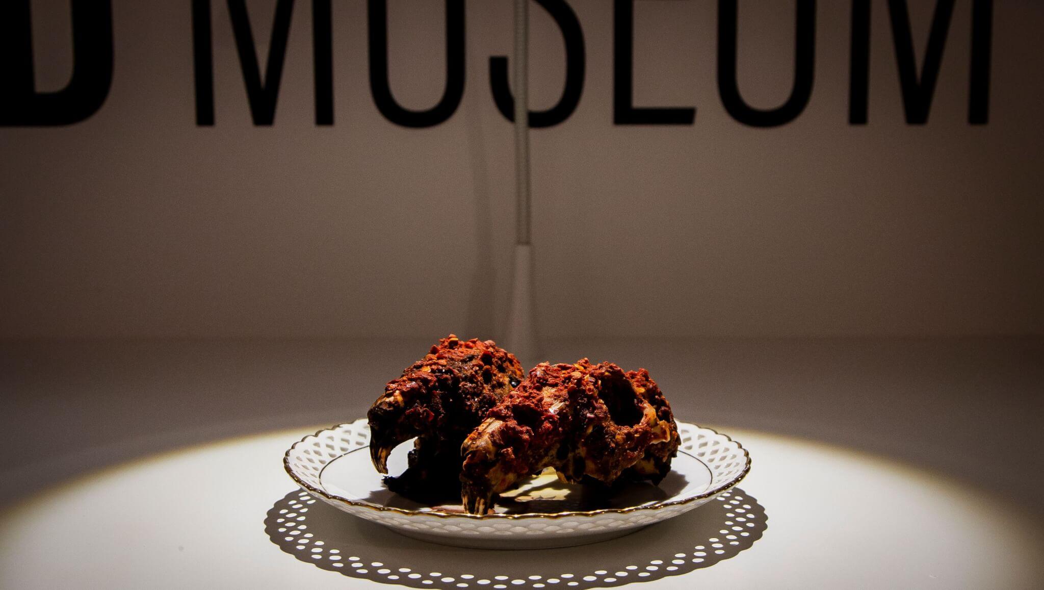 museo de comida asquerosa
