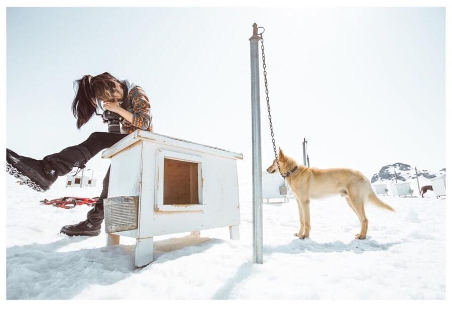chica en la nieve y perro