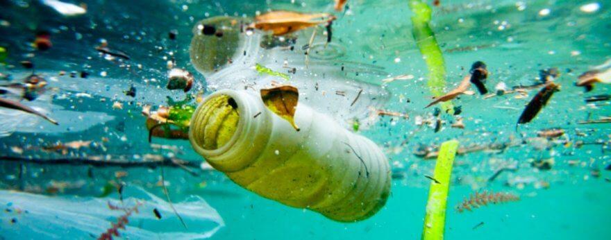 Oceans' Dealer en defensa del medio ambiente