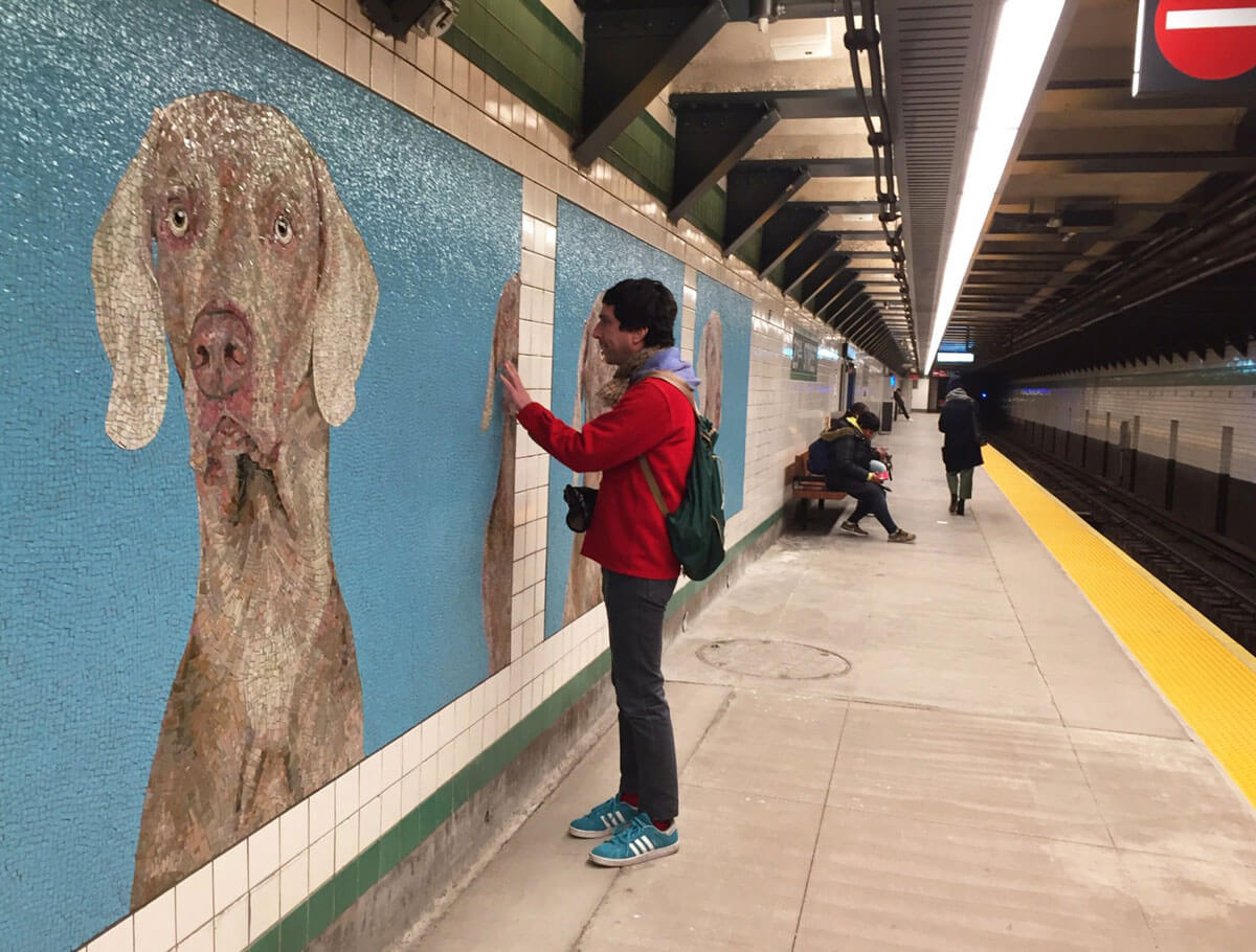 William Wegman estrena mosaicos en metro de Nueva York
