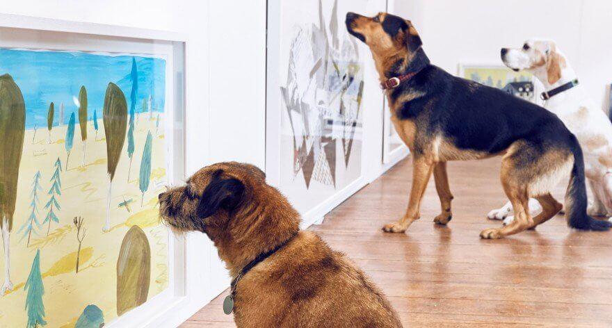 Museo de Perros llega a Nueva York
