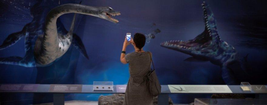 El Museo Nacional de Brasil y su nueva exhibición
