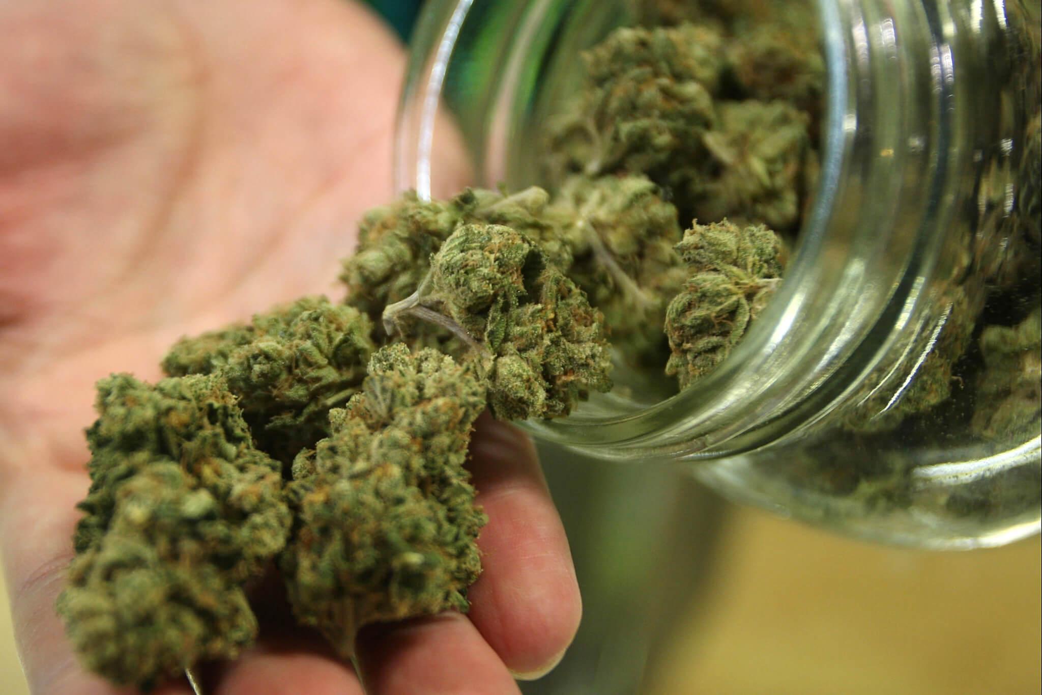 persona sosteniendo un frasco con marihuana