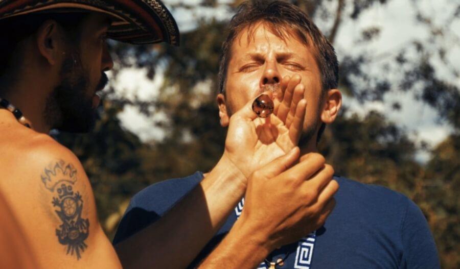 Bufo Alvarius ancestral medicine