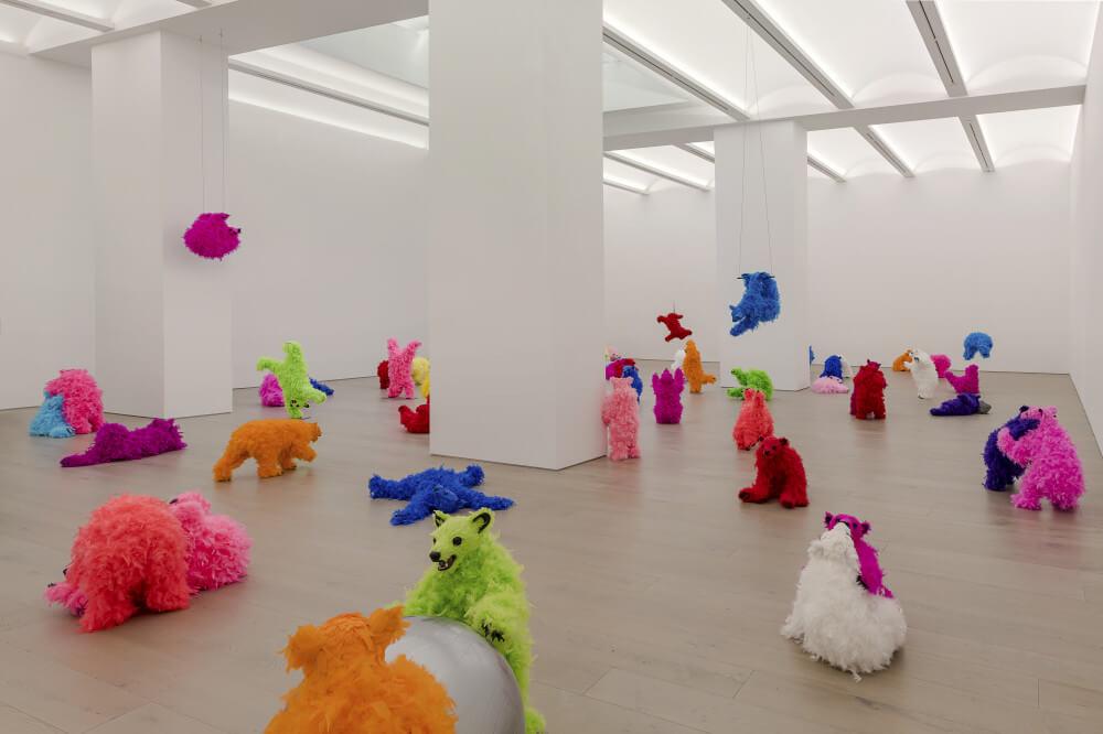osos de exposición en Nueva York