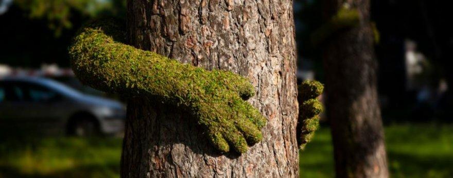 Monsieur Plant homenajea a la naturaleza con instalación