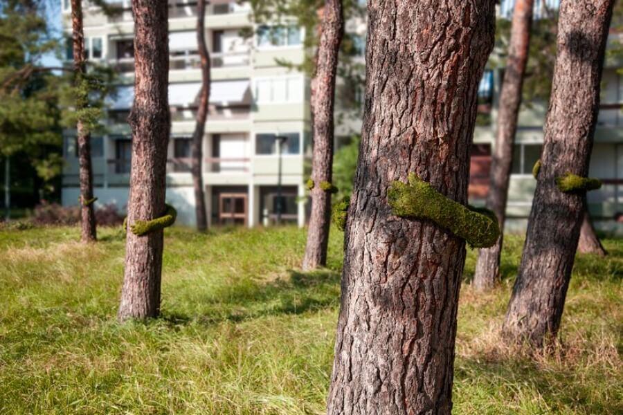 Monsieur Plan rinde homenaje a la naturaleza con instalación