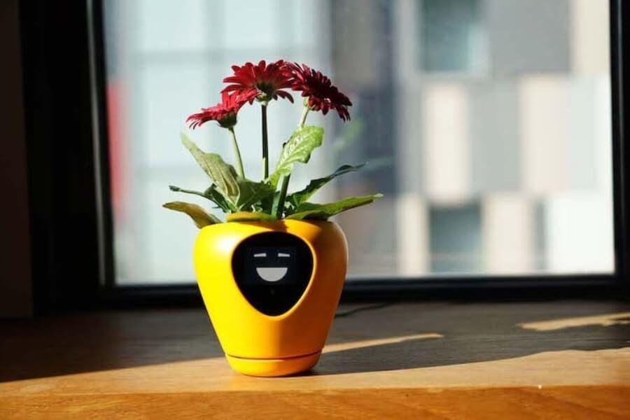 La nueva smart planter