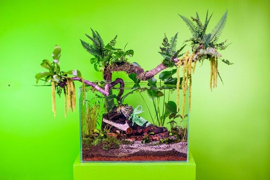 Sneakerium el nuevo proyecto de Mr. Plant