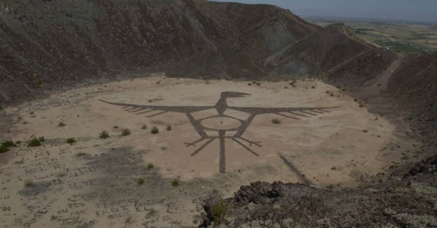 Dibujo de zopilote aparece en Baja California