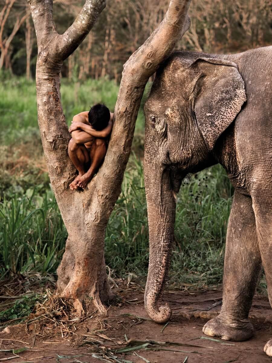 Los mejores trabajos fotográficos-Steve McCurry