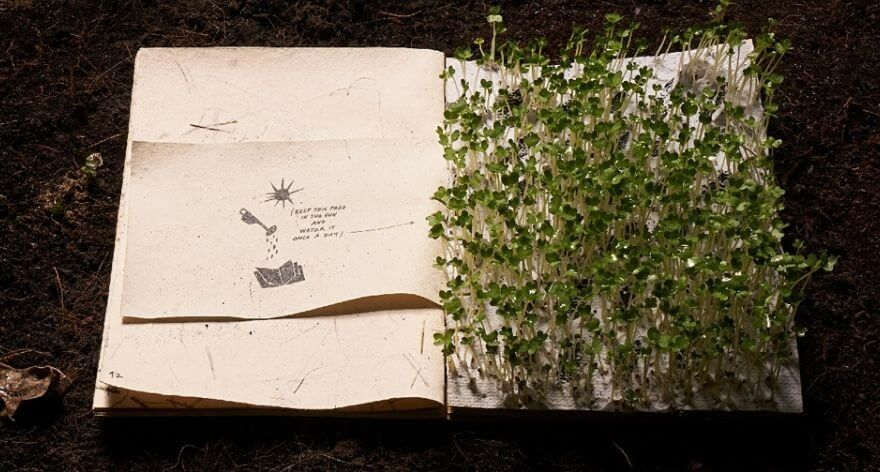 Illustrated book of recycled paper becomes a miniature garden