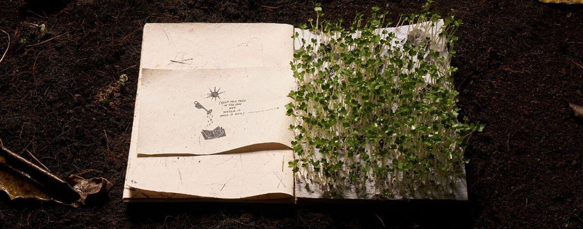 Libro ilustrado de papel reciclado se convierte en un jardín miniatura