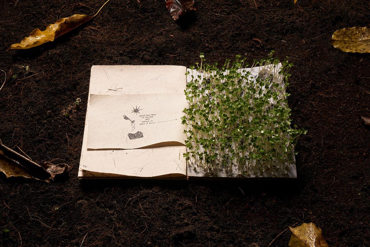 interior con plantas del libro ilustrado interactivo para niños