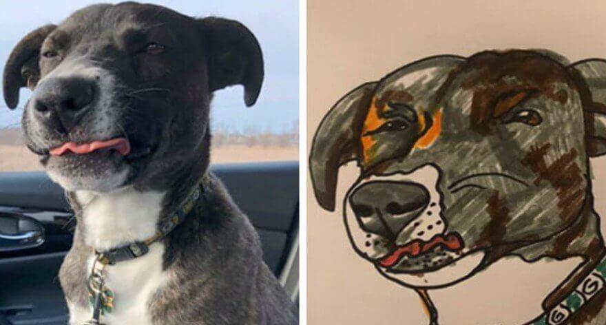 Dibujos de mascotas a cambio de donativos