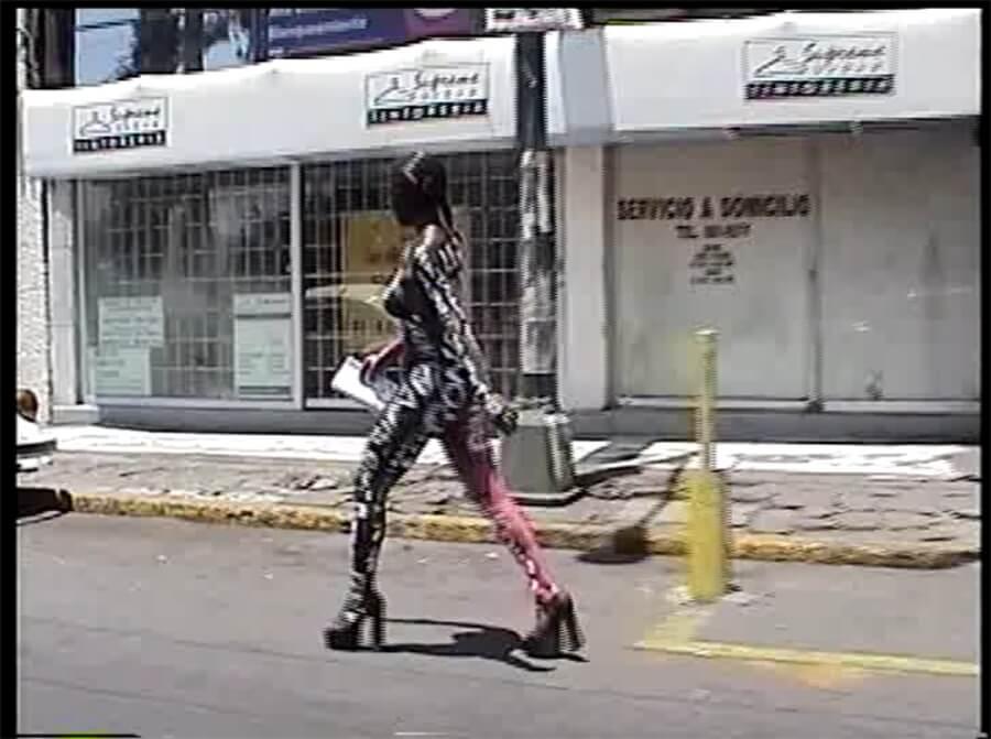 Mujeres Mexicanas del performance Rocío Boliver