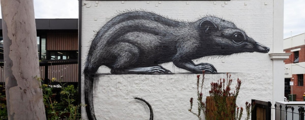 "ROA will present his exhibition ""Annihilation"""