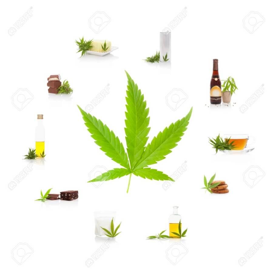 The Hemp & Cannabis Fair en California