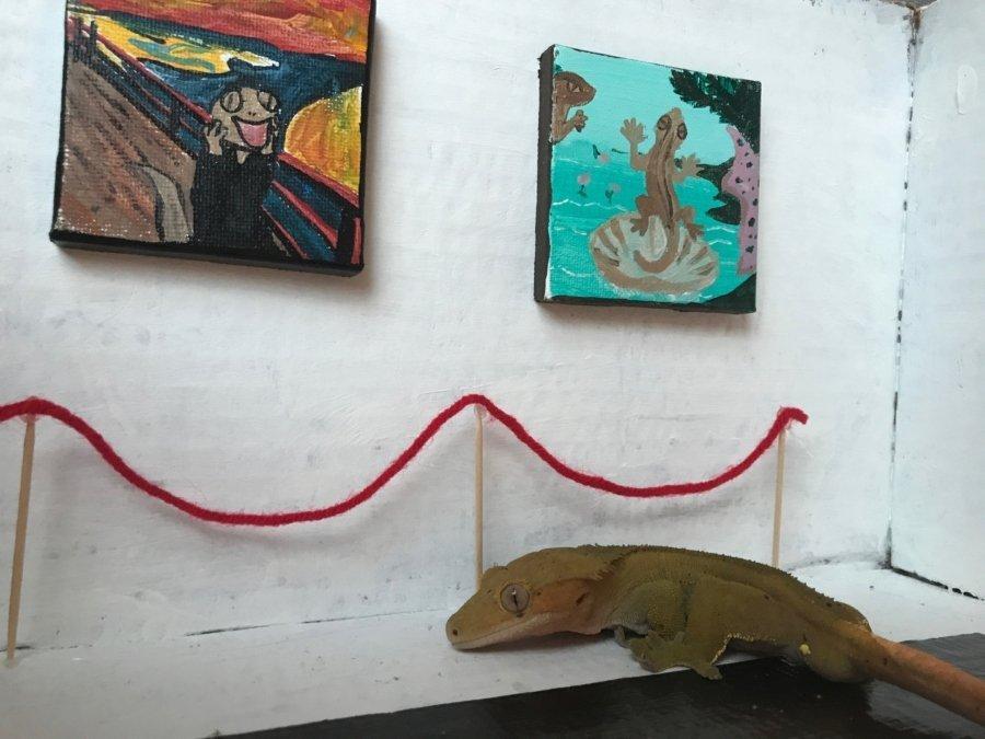 Jill Young creo este recinto cultural para su lagarto