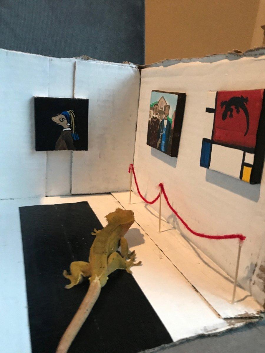 Jill Young creo este museo para su lagarto