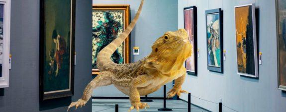 Museo para un lagarto, la creación de una mujer durante la cuarentena