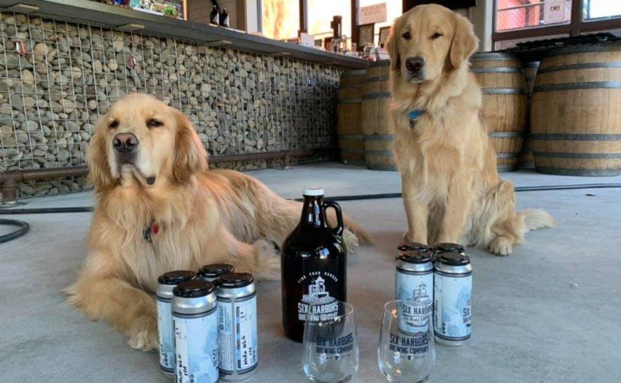 La tienda de cerveza incluyóa estos dos ayudantes de reparto