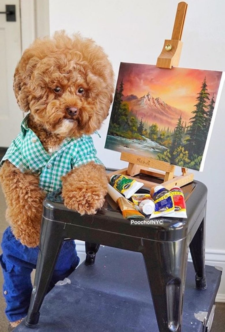 Bob Ross tiene un nuevo doble y es un perrito