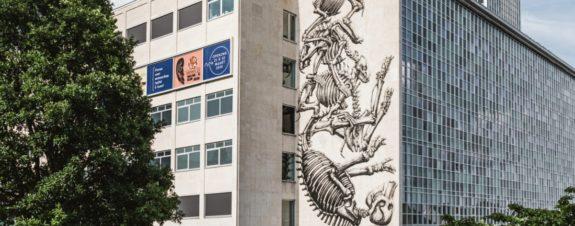 Nuevo mural de ROA en Museo de la Universidad de Gante