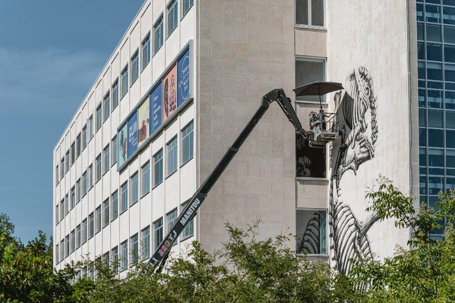 Mural del esqueleto de un rinoceronte y un elefante