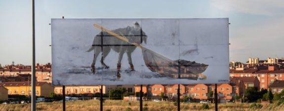 INSURRECTA de Gonzalo Borondo, arte en toda Segovia