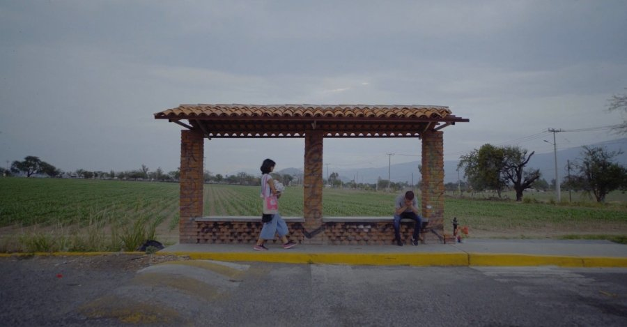 Escena ded Cabana de buboi