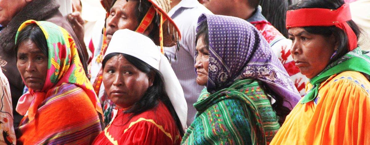 Feria de las Lenguas Indígenas celebrará edición online