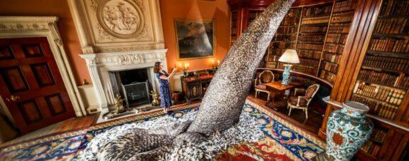 Kate MccGwire y sus instalaciones con plumas de aves