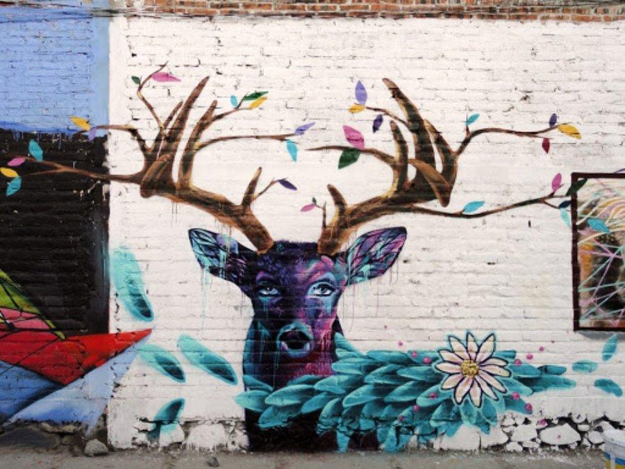 Pequeño mural de un venado en León