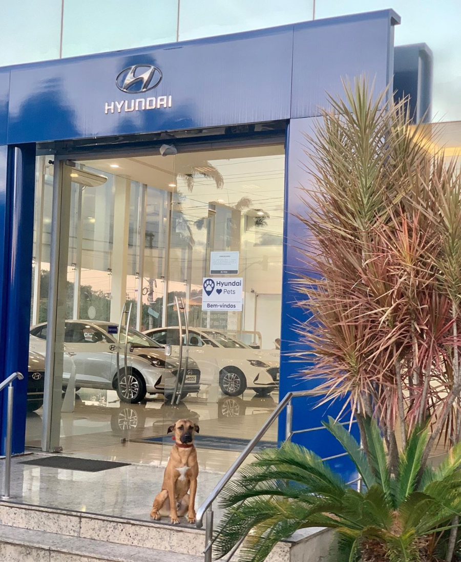 Tucson Prime en la puerta de Hyundai