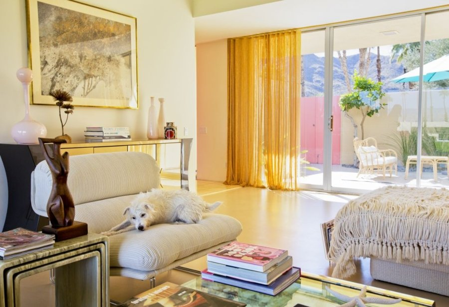 Rocky, Jack Russell Terrier, Arquitecto: Richard Harrison 1966