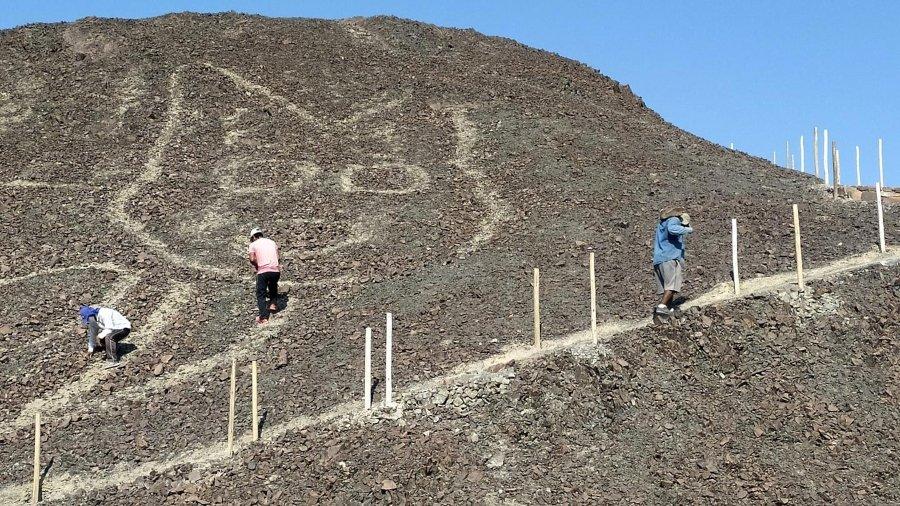 Descubrieron geoglifo de gato en Perú