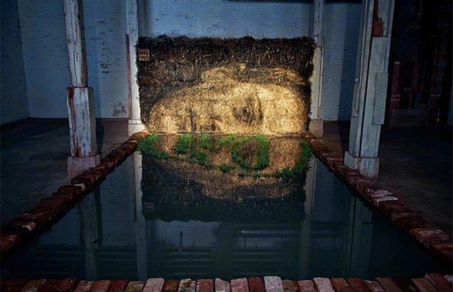 El artista se apropia e espacios olvidados para crear arte