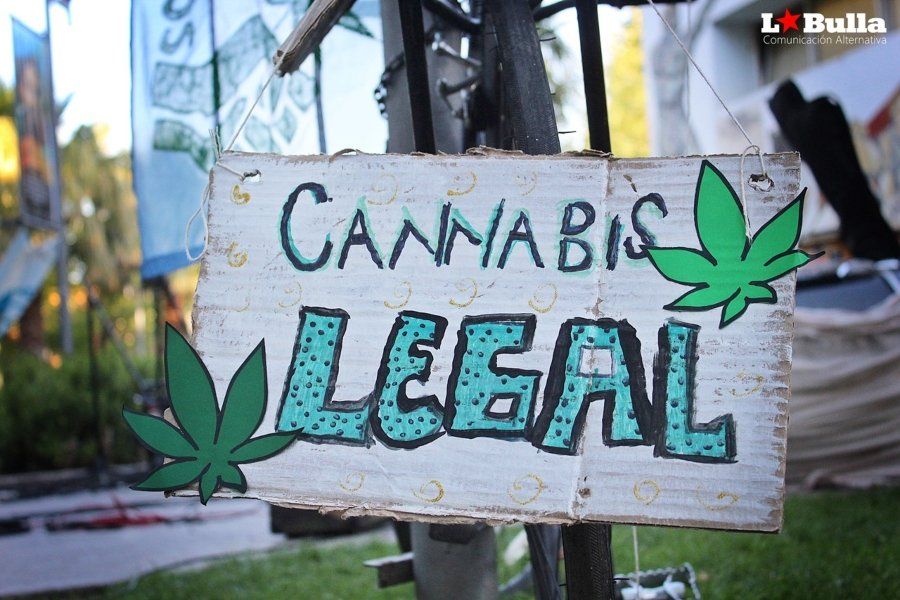 "Cartel ""Cannabis Legal"""