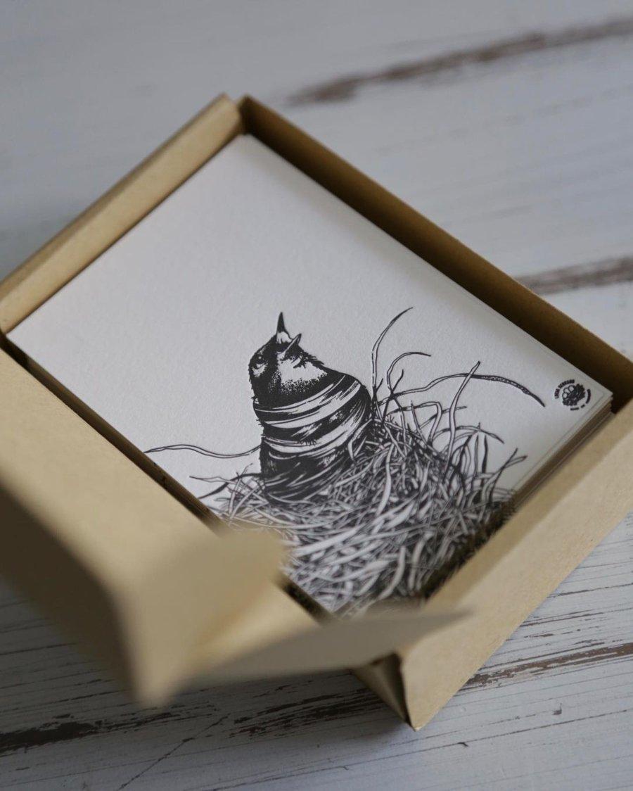 Ilustración de Lucía Serrano