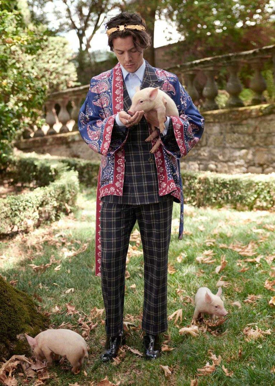 Harry Style en campaña para Gucci