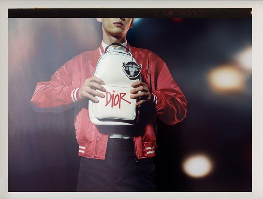 Colección de Dior x Shawn Stüssy para recibir el año nuevo chino