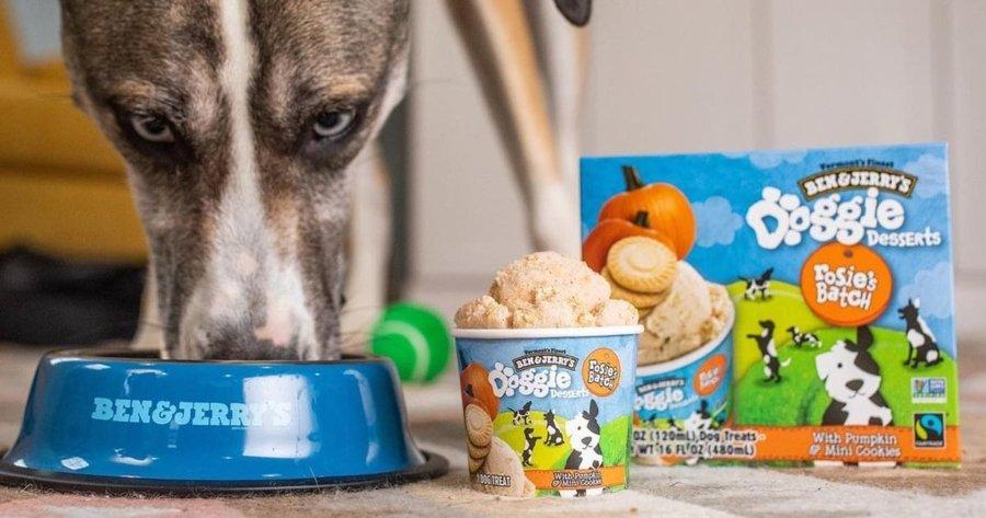 Créditos: Ben & Jerry´s lanza helados Doggie Desserts para perritos