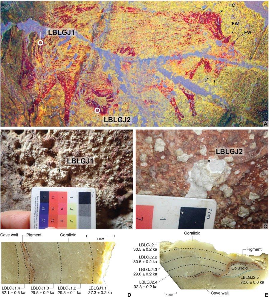 Análisis de la Pintura de cerdito encontrada en Célebes