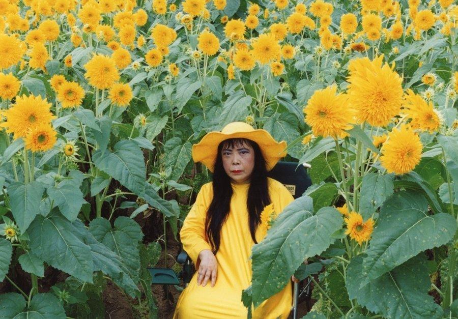 Yayoi Kusama. Flower Obsession (Sunflower) | Jardín Botánico Nueva York (NYBG) para Cosmic Nature