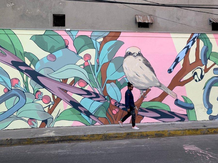 David Piñon caminando frente a uno de sus murales