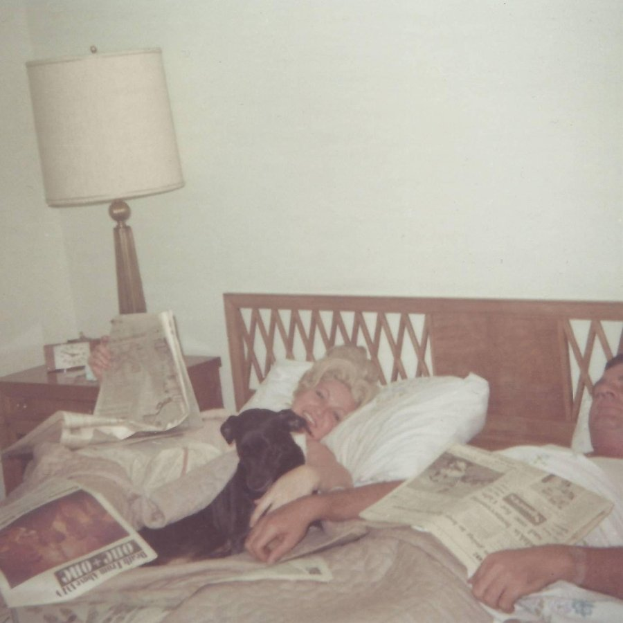 Portada del nuevo sencillo de Dead from above 1979